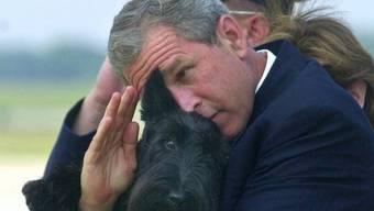 Auch bei offiziellen Anlässen dabei: George W. Bushs Scottish Terrier Barney (Archiv)