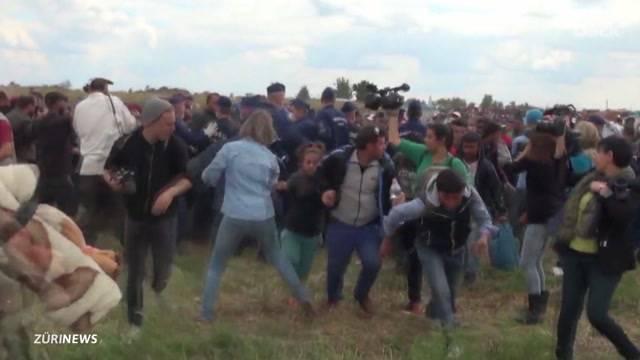 Gewalt gegen Flüchtlinge: Kamerafrau entlassen