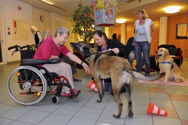 Hundetrainerin Martina Dietschi und ihr eigener Hund Homy begrüssen eine Bewohnerin