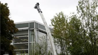 Restauration 2016; derzeit steht nur der Stamm der Hutter-Skulptur bei der Kanti Solothurn.