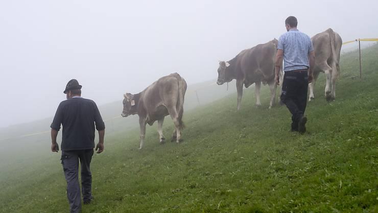 Kleinbauern statt industrialisierte Landwirtschaftsbetriebe sollen die Schweizer Bevölkerung ernähren. Das verlangt die Ernährungssouveränitäts-Initiative.