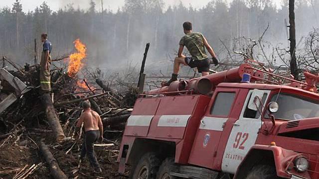 Die Fläche der Waldbrände wird kleiner, die Zahl der Feuer steigt