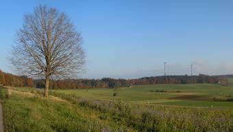 Nach verschiedenen Überprüfungen stehen die vier Standorte der geplanten Windräder auf dem Lindenberg fest.