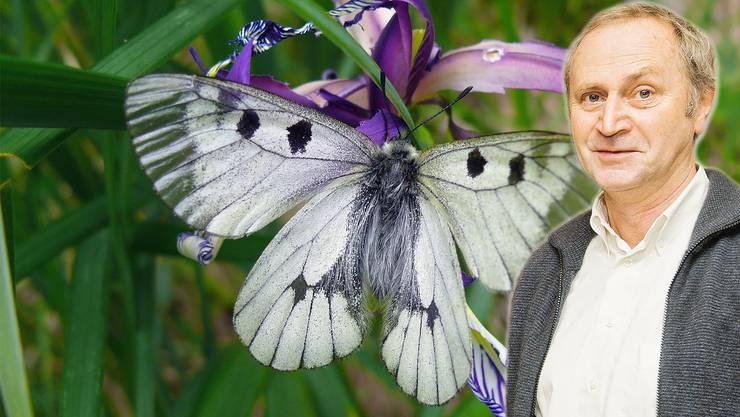 Grünen-Grossrat Hansjörg Wittwer: «Dass wir uns um den Schutz der Insekten kümmern, ist mir ein dringendes Anliegen.»