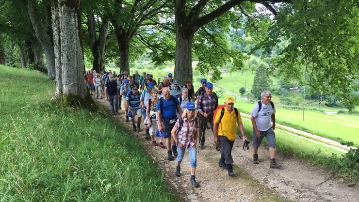 70 Leserwanderer beim ersten Aufstieg, es folgten noch gefühlt zehn.