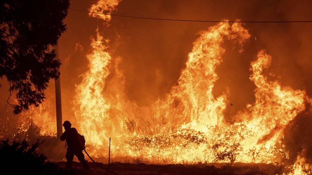 Wegen hunderter Brände hat die Feuerwehr in Kalifornien ihr Jahresbudget innert zwei Monaten fast aufgebraucht. Auf dem Bild Flammen des Delta-Fire im Shasta-Trinity Nationalforst.