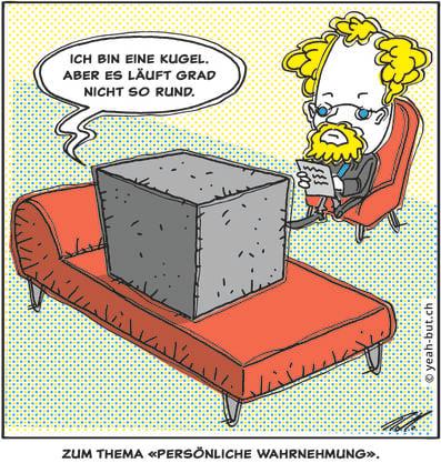 Ein Cartoon zum Thema «Persönliche Wahrnehmung» von Roman Hofer.