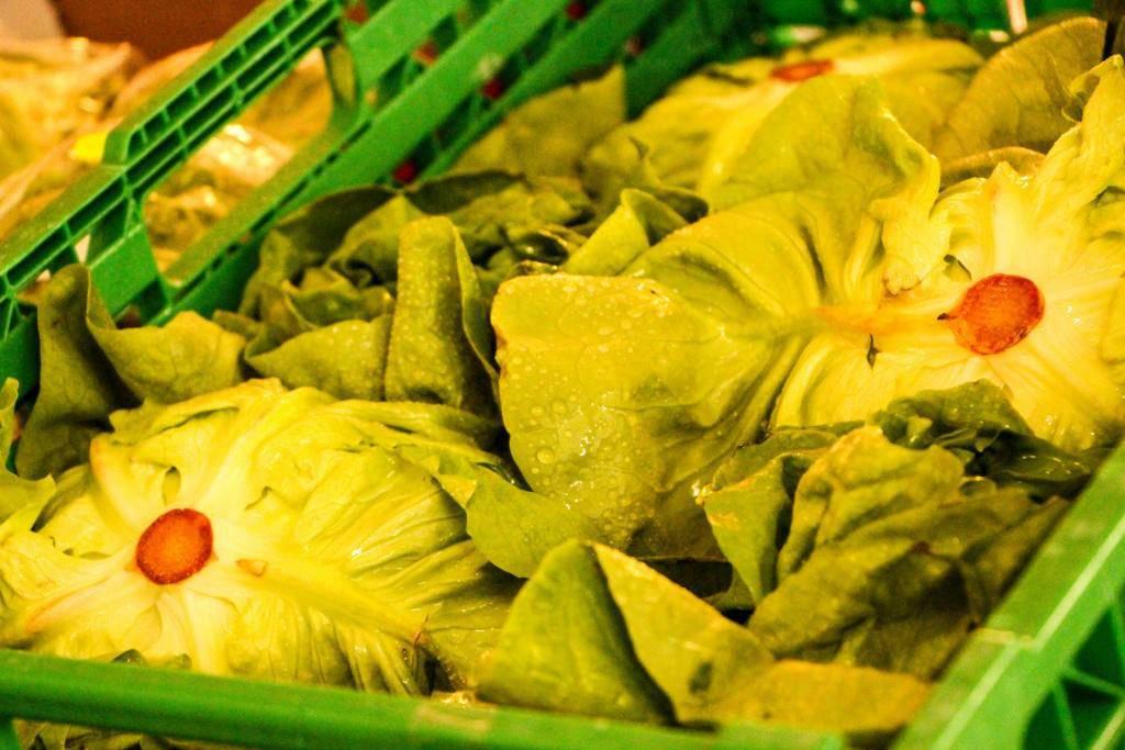 Frisch und knackig: So sieht schönes Gemüse aus. (© Raphael Rohner)