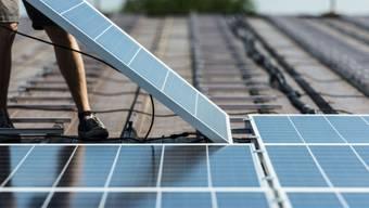Installation von Solardmodulen in Rheinau (Archiv)