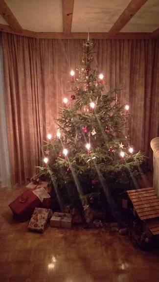 Der Christbaum von Sonja