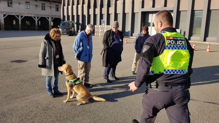 Probanden stellen sich für einen Test zur Verfügung. Labrador Kayo findet die mit Sprengstoff kontaminierte Tasche.