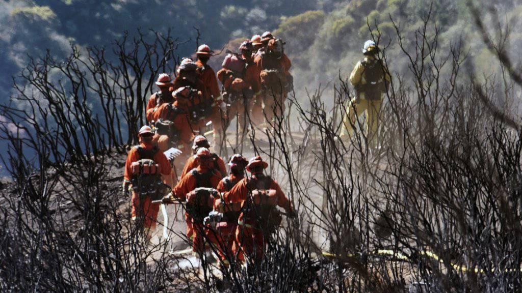Das sogenannte Thomas-Feuer in Kalifornien nördlich von Los Angeles zerstörte eine Fläche von der Grösse des Kantons Uri. (Archivbild)