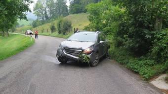 Der bekiffte Junglenker landete mit dem Auto im Grünen.