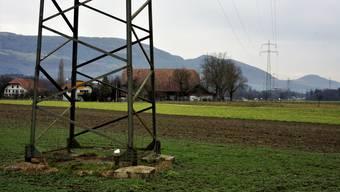 Deitinger Bauern fordern ein Trassee nördlich der Autobahn für diese SBB-Hochspannungsleitung.