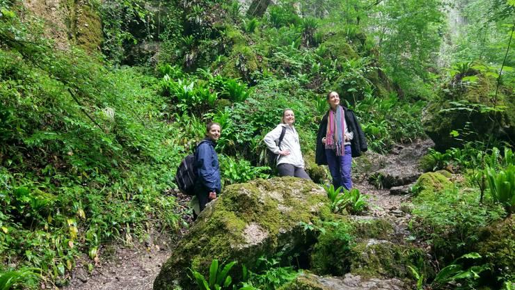 Wie im Dschungel - ein Trio auf Schatzsuche im Baselbiet.