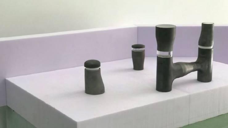 «Es könnten auch Körpertrainingseinheiten sein», sagt Ilona Ruegg über ihre Skulpturen, die zwischen 60 Zentimetern und 3Metern hoch sein sollen. Das Projekt ergänzt eine Reihe von Kunstwerken im öffentlichen Raum, die polarisieren.