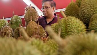 Durian-Früchte sind in Südostasien beliebt, ihr süsslich-fauler Geruch ist aber sehr gewähnungsbedürftig. (Symbolbild)