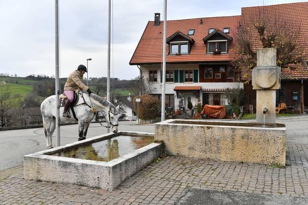 Eine Reiterin tränkt ihr Pferd am 1974 erstellten Dorfbrunnen von Kienberg.