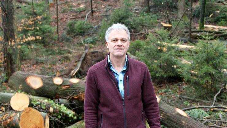 Thomas Studer, Leiter Forstbetrieb Leberberg, im stark von Schäden betroffenen Wald «Hinteregg» bei Flumenthal.