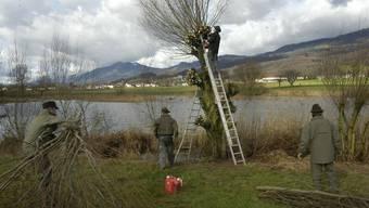 Schweisstreibende Arbeit für die Jäger: der traditionelle Hegetag.