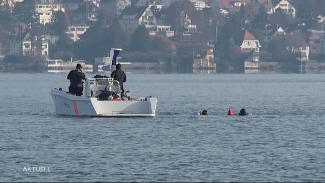 Transportdrohne stürzt in Zürichsee