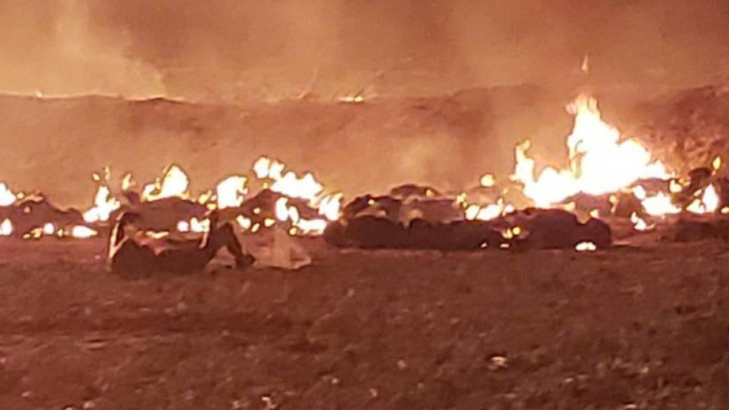 Verbrannte Körper liegen am Boden neben der Benzinpipeline.