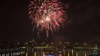 Das Basler Silvester-Feuerwerk 2013/214