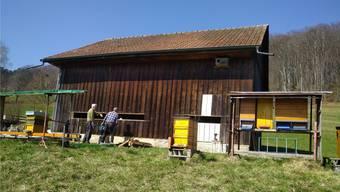 Der Lehrbienenstand, hier im Bau, steht im Gebiet Königstein. zvg