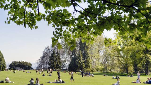 Glückliche Schweizer geniessen die Sonne in einem Park (Symbolbild)