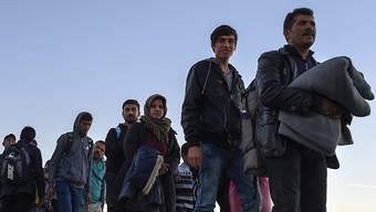 Die Flüchtlingskrise hat die Finanzkrise als grösstes globales Risiko abgelöst.