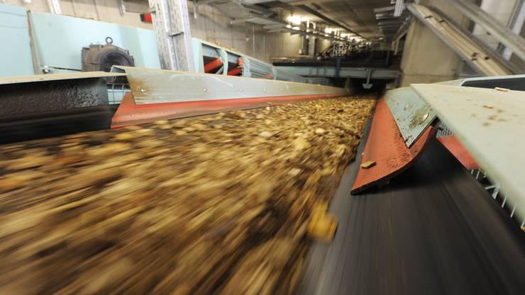 In Kaiseraugst ist schon seit Jahren ein Holzheizkraftwerk geplant.