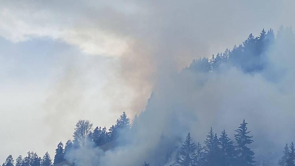 Zweieinhalb Fussballfelder Wald verbrannten am Freitagnachmittag bei Crésuz.