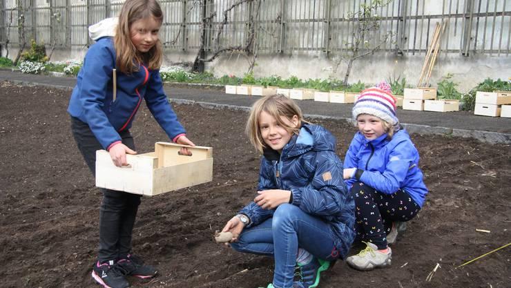 """Die Kinder hatten viel Spass an der """"Pflanzete""""."""