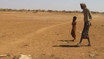 Nicht alle Regionen in Äthiopien sind gleich fruchtbar (Archiv)