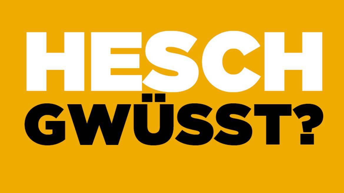 webartikelbild_radio_bern1_hesch_gwusst_800x500.jpg__1170x0_q90_subsampling-2_upscale