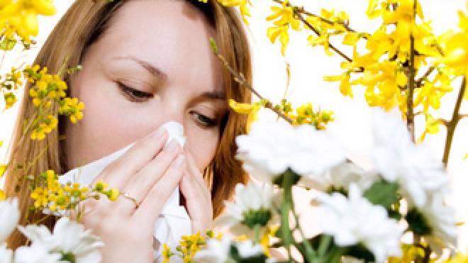 Sobald die Sonne wieder scheint fliegen auch die Pollen.