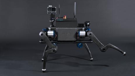 Der Roboter-Hund Anymal überwindet Hindernisse mit links.