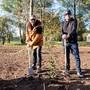 """Im Leben soll man einen Baum Pflanzen: Die deutschen Musiker Sasha (links) und Smudo haben diesen Punkt im Hamburger """"Fame Forest"""" abgehakt."""