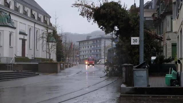 Die Feuerwehr Dietikon trifft beim Bahnhof Dietikon ein, wo ein Baum auf die Fahrleitung der Bremgarten-Dietikon-Bahn gefallen ist.