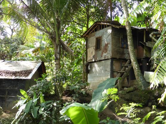 In den Städten leben viele Menschen in kreativen Hütten aus Blech, Plastik und Holz.