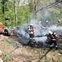 Am Waldrand in Obbürgen fing eine Holzbeige Feuer - ein Anwohner verletzte sich beim Löschversuch.
