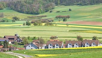 Im Dorf gibt es 758 Landwirtschartsparzellen – eine effiziente Bewirtschaftung ist kaum möglich.