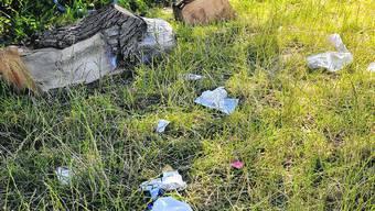 Teurer Müll: Künftig wird sogenanntes «Littering» mit Bussen bestraft werden. (Oliver Menge)