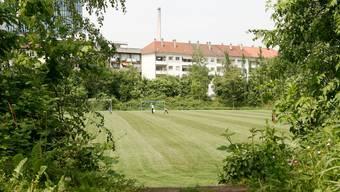 Wie viel Grünfläche:? Die Meinungen über die künftige Gestaltung des Landhof-Areals sind in der SP geteilt. (Archivbild niz)
