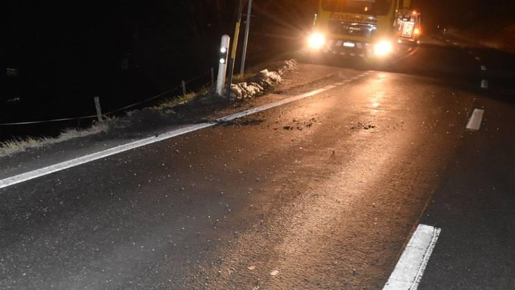 Der Unfallort bei Schluein, wo Hirsch und Auto zusammenprallten.