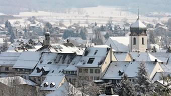 In Bad Zurzach trafen sich kürzlich zahlreiche Experten – wegen Corona virtuell.