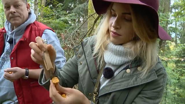 Pilz mit Pfiff: Auf Pilzsuche Sylwina und Frank