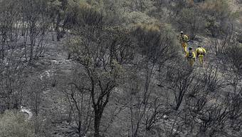 40 Prozent des grössten Brandes nördlich von San Francisco sind gelöscht