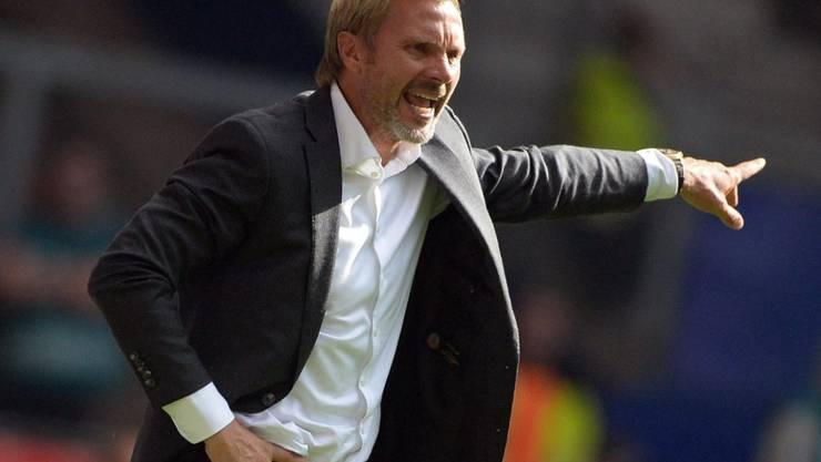 Thorsten Fink wird Trainer von Austria Wien