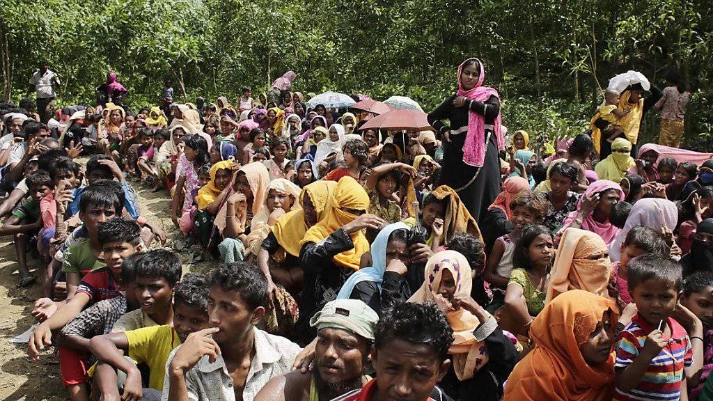 Bangladesch erwägt, die Flüchtlinge aus Myanmar auf eine unbewohnte Insel zu bringen.